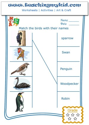 free worksheets - Match the birds with their names - 3