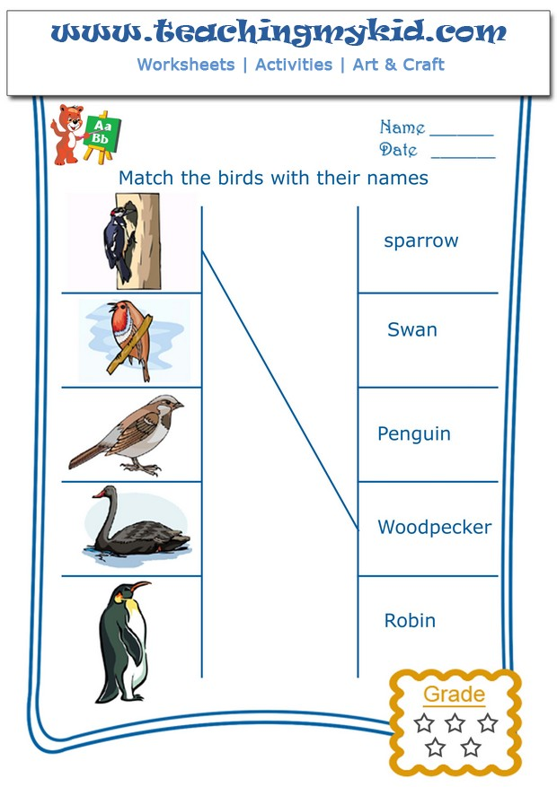 free worksheets match the birds with their names 3. Black Bedroom Furniture Sets. Home Design Ideas