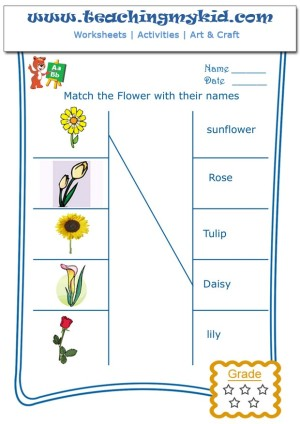 Printable Kindergarten Worksheets Match Flowers With Name 1