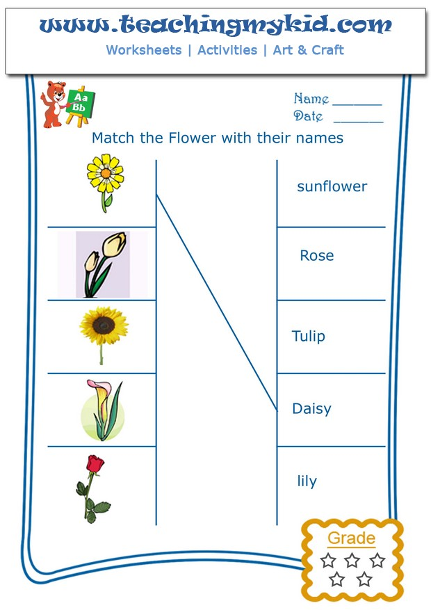 math worksheet : general knowledge archives  page 8 of 15  teaching my kid  page 8 : Flower Worksheets For Kindergarten