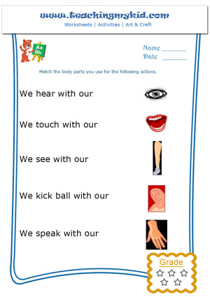 kindergarten learning - Match the body parts - Worksheet - 1