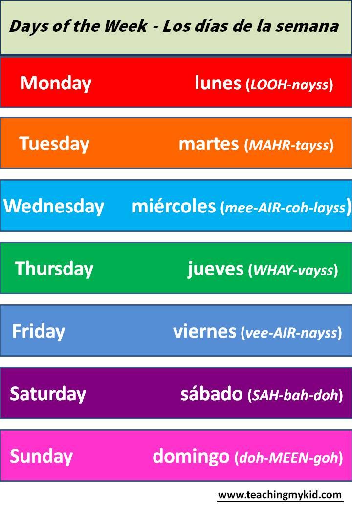 school worksheet-Days of the week-English/Spanish - Teaching My Kid